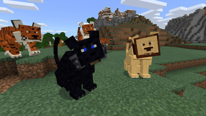 Big Cats Add On Minecraft Pe Mods Addons