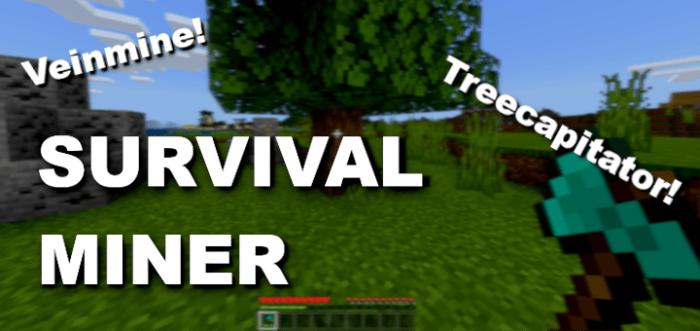 Survival Miner V2 Bedrock 1 16 100  Addon Realms Support