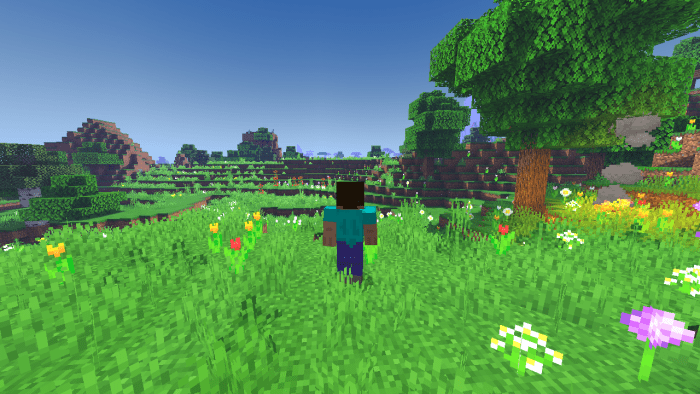 Zebra Shaders Pe Bug Fix Update Minecraft Pe Texture Packs