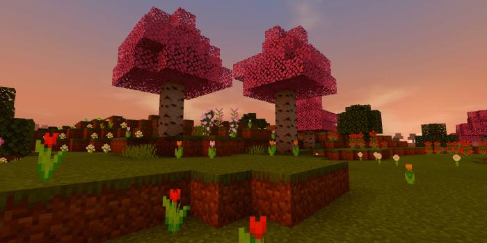 Sakura Tree Minecraft Pe Texture Packs